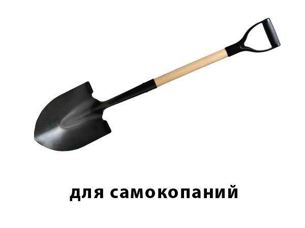 NEEZaSUUkrw