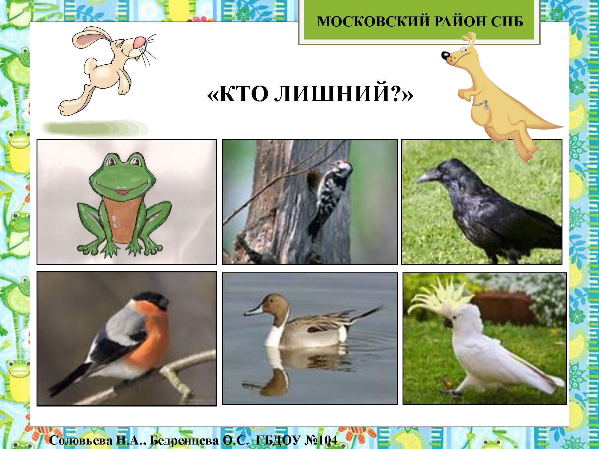 секция 8. ДОУ 104. Московский район_Страница_32