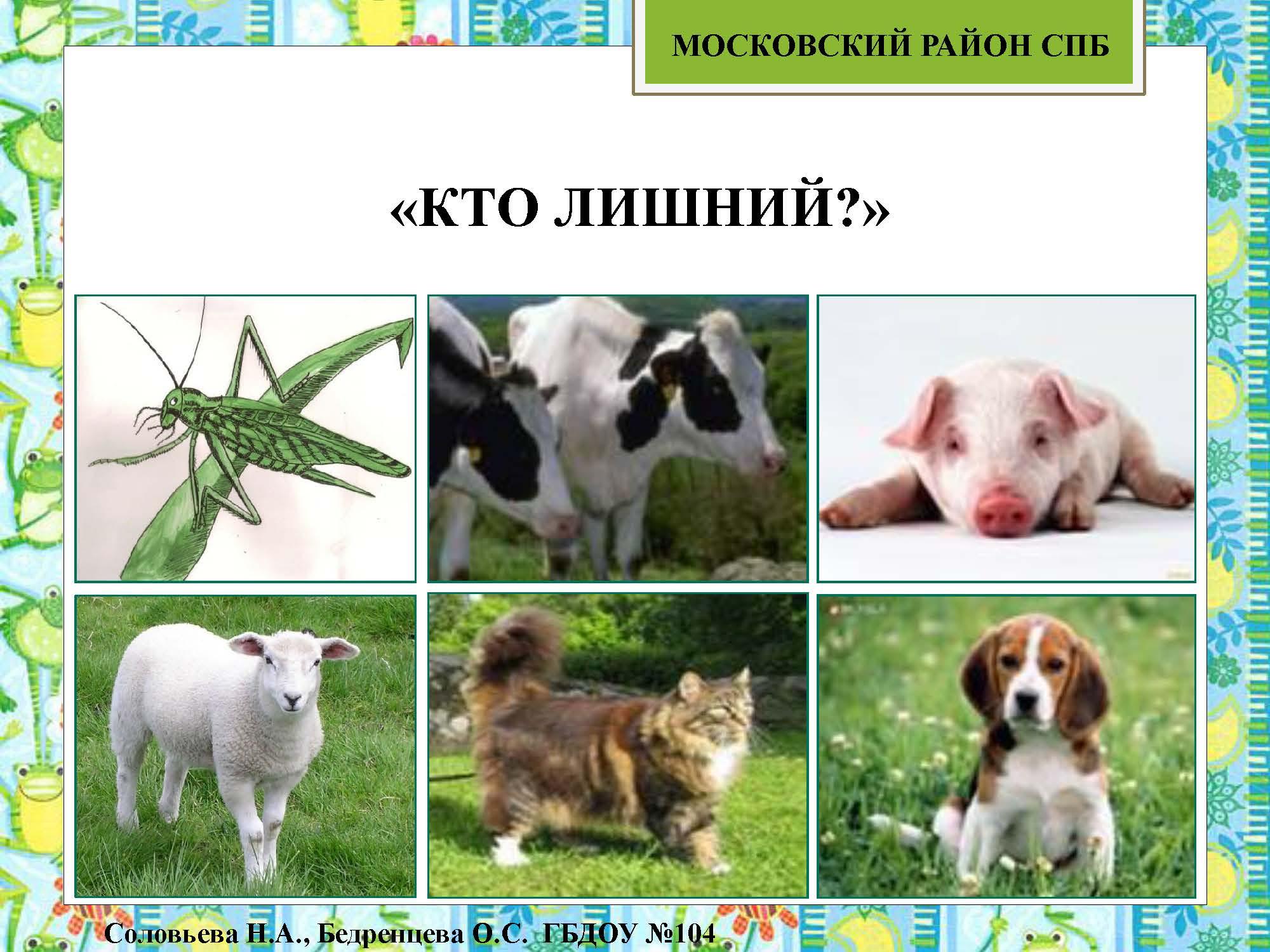 секция 8. ДОУ 104. Московский район_Страница_33