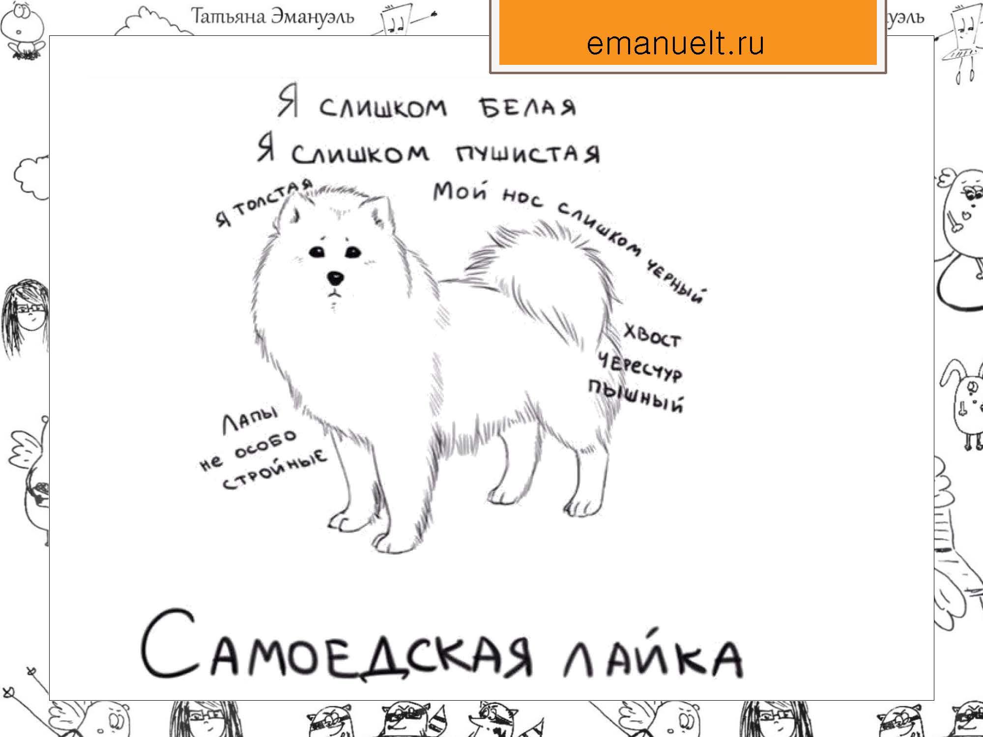 секция 8. Эмануэль Т.С., Московский район_Страница_10